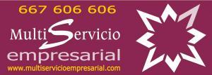 A.L.Multiservicio Empresarial, S.L.